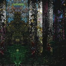 Four Sisters - Vinile LP di Entlang