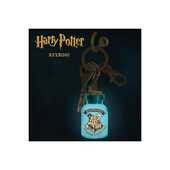 Idee regalo Portachiavi Luminoso H. Potter Hogwarts Abysse Corp