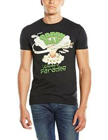 T-Shirt unisex Green Day. Welcome to Paradise