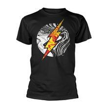 T-Shirt Unisex Dc Originals. Molten Flash Logo