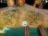 Videogioco CID The Dummy PlayStation2 1