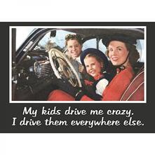 Retro Humour. Magnet Metal. My Kids Drive Me Crazy