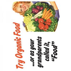 Retro Humour. Magnet Metal. Try Organic Food