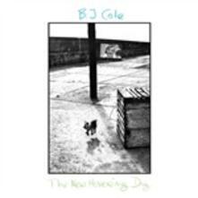 New Hovering Dog - Vinile LP di BJ Cole