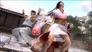Videogioco Dead or Alive 5 Xbox 360 1