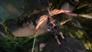 Videogioco Guild Wars 2: Heart of Thorns Edizione Pre Acquisto Personal Computer 9