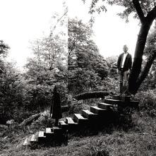 Timber Timbre - Vinile LP di Timber Timbre