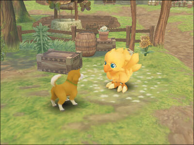 Final Fantasy Fables. Chocobo's Dungeon - 8