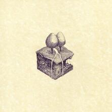 Western Culture - Vinile LP di Kiran Leonard