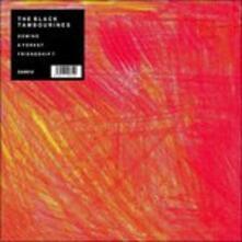 Domin - Vinile LP di Black Tambourines
