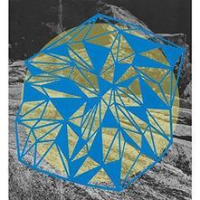 Field Theory - Vinile LP di Broads