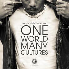 One World Many Cultures - Vinile LP di David Boomah