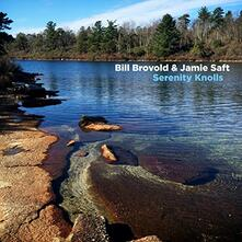 Serenity Knolls - Vinile LP di Jamie Saft,Bill Brovold