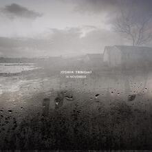 In November - Vinile LP di Joshua Trinidad