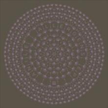 Allergens - Vinile LP di Anile
