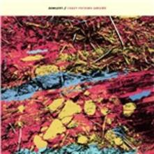 Crazy Fucking Dreams - Vinile LP di Bangers