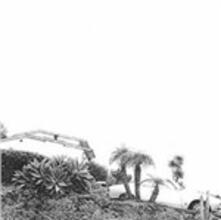 Hot Dreams - Vinile LP di Timber Timbre