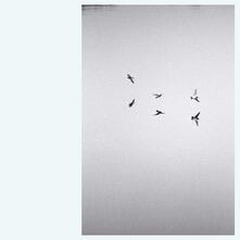 Landscapes - Vinile LP di Kirk Barley