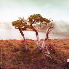 Juniper - Vinile LP di Slowly Rolling Camera