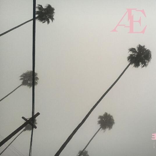 Ae - Vinile LP di Anton Eger