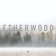 In Stillness - Vinile LP di Etherwood
