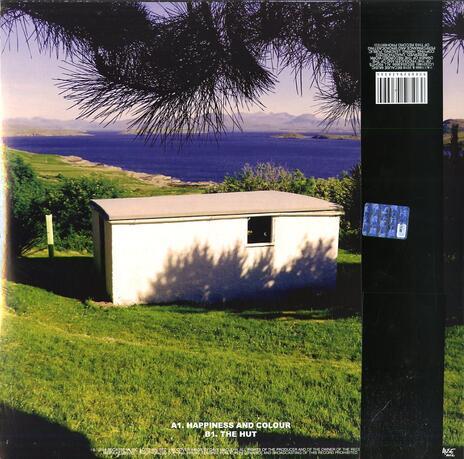 The Beta Band (Deluxe Edition) - Vinile LP di Beta Band - 2