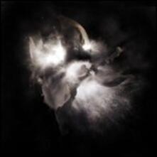 In a Dim Light - Vinile LP di Nedry