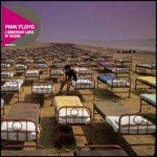 CD A Momentary Lapse of Reason Pink Floyd