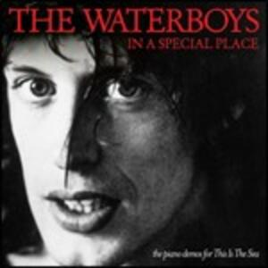 In a Special Place - CD Audio di Waterboys