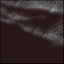 Wixiw - Vinile LP di Liars