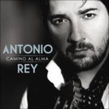 Camino Al Alma - CD Audio di Antonio Rey