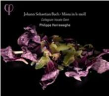 Messa in Si minore - CD Audio di Johann Sebastian Bach,Philippe Herreweghe,Collegium Vocale Gent