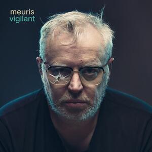 Vigilant - Vinile LP di Meuris