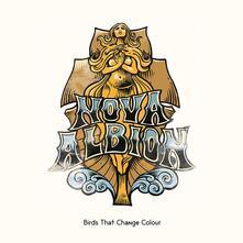 Nova Albion - Vinile LP di Birds That Change Colour