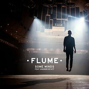 Some Minds - Vinile LP di Flume