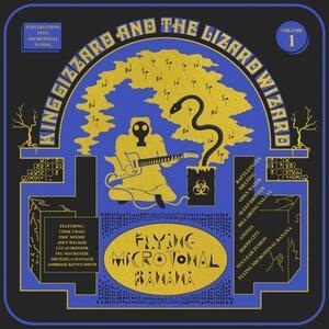 Flying Microtonal Banana - Vinile LP di King Gizzard & the Lizard Wizard