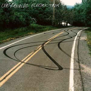 Electric Trim - Vinile LP di Lee Ranaldo