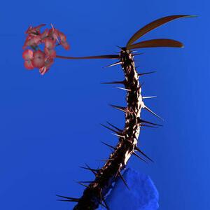 Skin Companion II Ep - Vinile LP di Flume