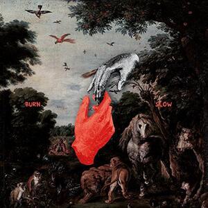 Burn Slow - Vinile LP di Chris Liebing
