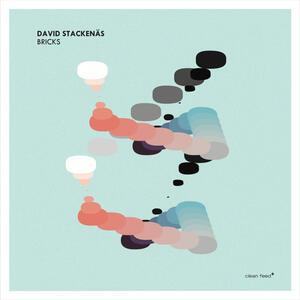 CD Bricks David Stackenas
