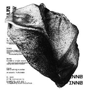Multiverse - Vinile LP di Bnnt