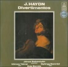 Divertimenti - Vinile LP di Franz Joseph Haydn