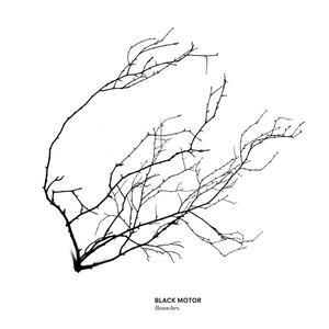 Branches - Vinile LP di Black Motor