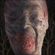 The Four Stages of Decomposition (Limited Edition Picture Disc) - Vinile LP di Festerday