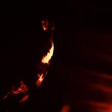 Stormcrowfleet - Vinile LP di Skepticism