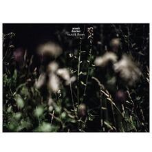 Rocks & Straws - Vinile LP di Anneli Drecker
