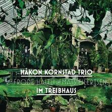 Im Treibhaus - Vinile LP di Hakon Kornstad