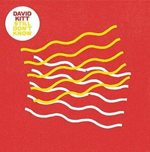 Still Don't Know - Vinile 10'' di David Kitt