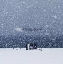 II. The Big Blow (Coloured Vinyl) - Vinile LP di Tronosonic Experience