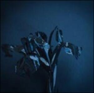 The Rifts - Vinile LP di A Swarm of the Sun